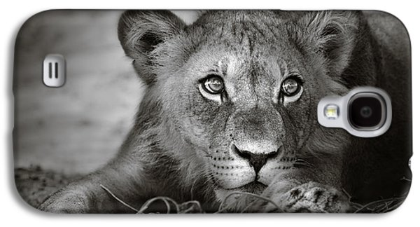 Young Lion Portrait Galaxy S4 Case by Johan Swanepoel