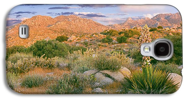 Yucca Spanish Bayonet Plants Blooming Galaxy S4 Case by Panoramic Images