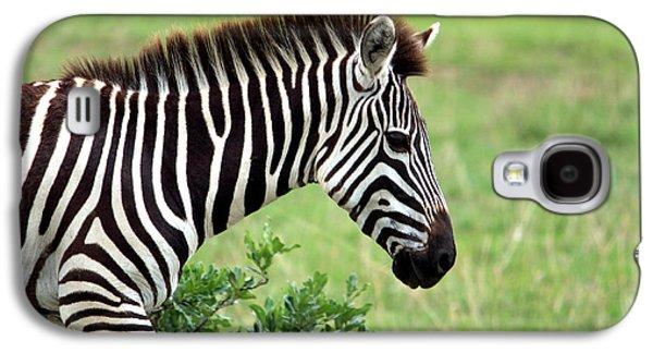 Zebra Galaxy S4 Case by Aidan Moran