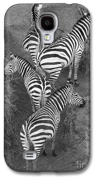 Zebra Design Galaxy S4 Case by Carol Walker