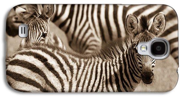 Zebra Stripes Galore Galaxy S4 Case