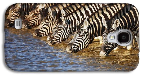 Zebras Drinking Galaxy S4 Case by Johan Swanepoel