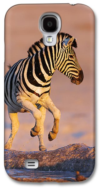 Zebras Jump From Waterhole Galaxy S4 Case by Johan Swanepoel