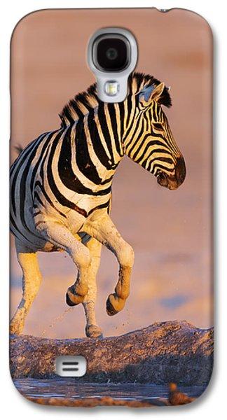 Zebras Jump From Waterhole Galaxy S4 Case by Johan Swanepoel