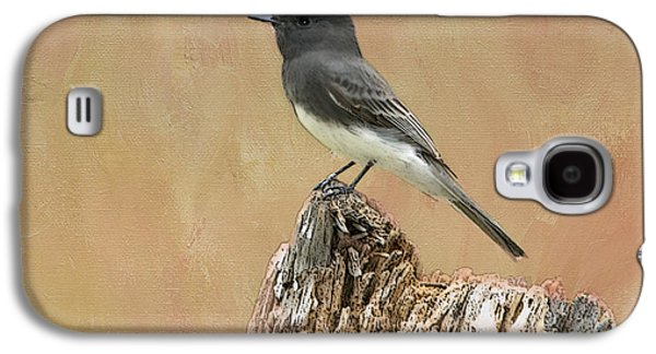 Black Phoebe Galaxy S4 Case by Betty LaRue