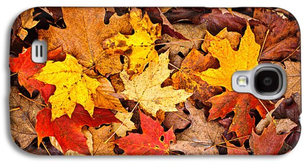 Fall Leaves Background Galaxy S4 Case