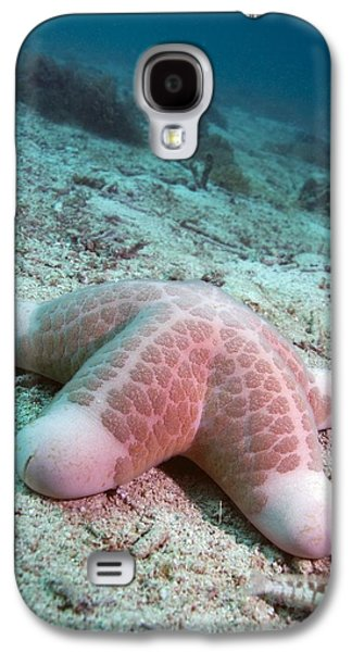 Granulated Seastar Galaxy S4 Case by Georgette Douwma
