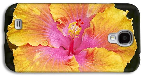 Hibiscus Galaxy S4 Case by Tony Cordoza