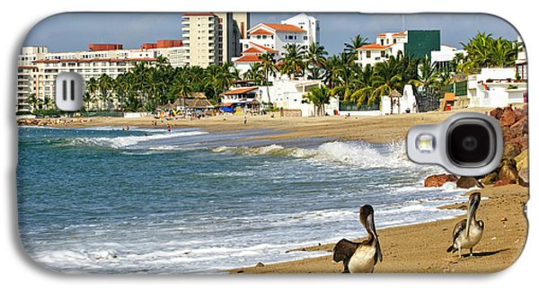 Pelicans On Beach In Mexico Galaxy S4 Case