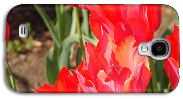 Praying Tulips Galaxy S4 Case by Rod Ismay