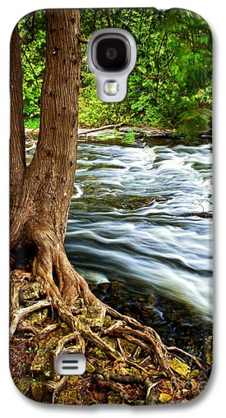 River Through Woods Galaxy S4 Case by Elena Elisseeva