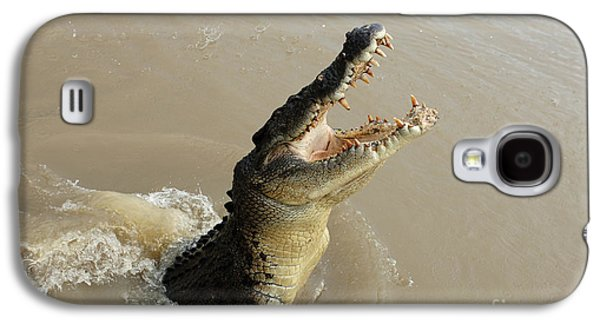 Salt Water Crocodile 2 Galaxy S4 Case by Bob Christopher