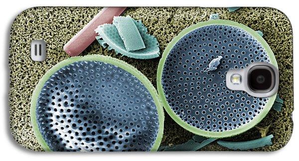 Saltwater Diatom Galaxy S4 Case
