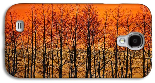 Silhouette Of Trees Against Sunset Galaxy S4 Case by Don Hammond