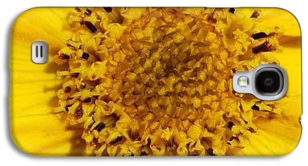 Yellow Flower Detail Galaxy S4 Case