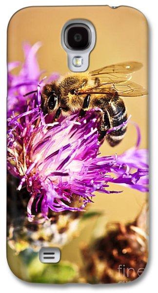 Honey Bee  Galaxy S4 Case by Elena Elisseeva