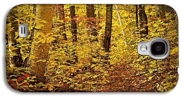 Fall Forest Galaxy S4 Case