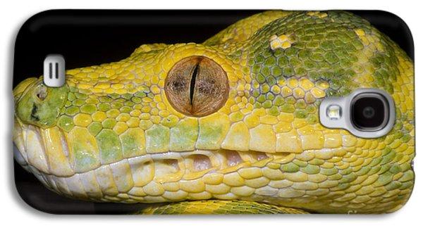 Green Tree Python Galaxy S4 Case