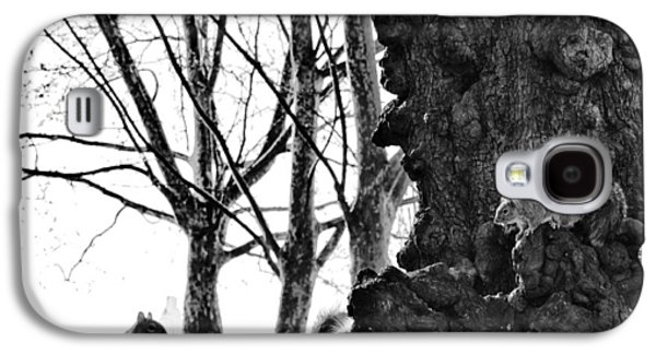 A Meeting Of Squirrels Galaxy S4 Case by Bill Cannon