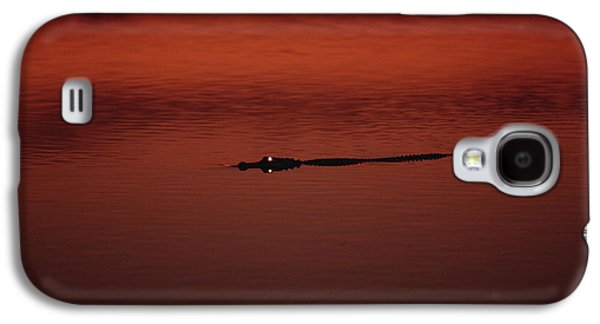 American Alligator Alligator Galaxy S4 Case by Konrad Wothe