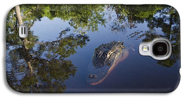 American Alligator In The Okefenokee Swamp Galaxy S4 Case