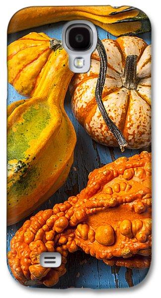Autumn Gourds Still Life Galaxy S4 Case by Garry Gay