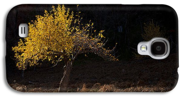 Autumn Light Galaxy S4 Case by Mike  Dawson
