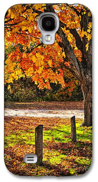 Autumn Maple Tree Near Road Galaxy S4 Case