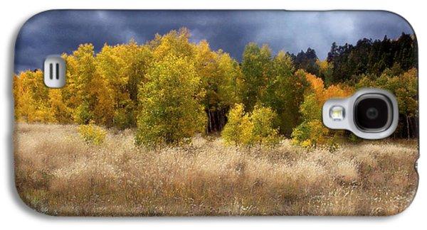 Autumn Meadow Galaxy S4 Case by Carol Cavalaris