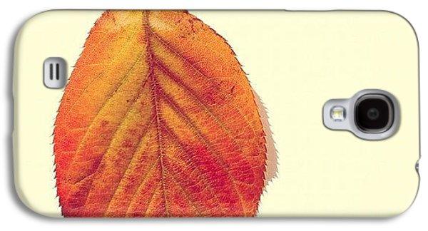 Orange Galaxy S4 Case - Autumn by Nic Squirrell