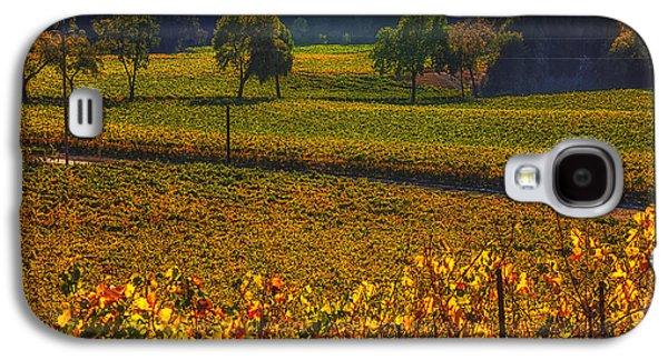 Autumn Vineyards Galaxy S4 Case by Garry Gay