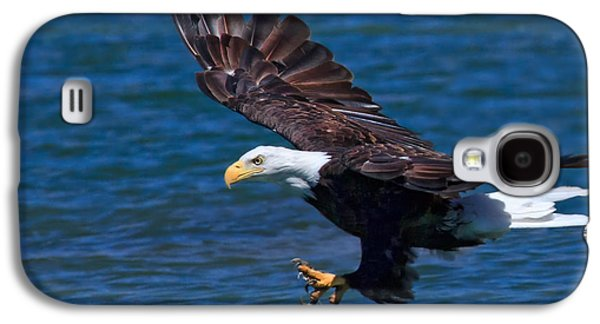 Bald Eagle On The Hunt Galaxy S4 Case
