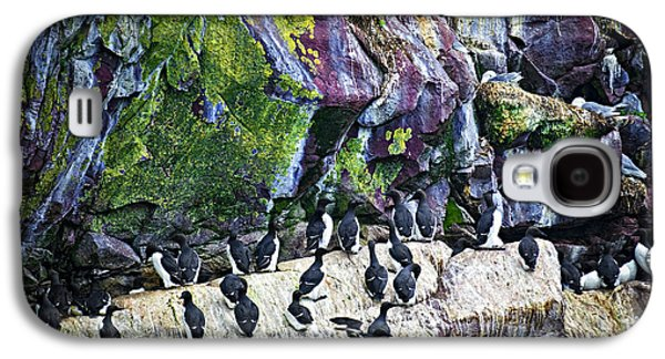 Birds At Cape St. Mary's Bird Sanctuary In Newfoundland Galaxy S4 Case by Elena Elisseeva