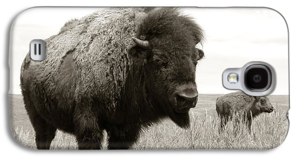 Bison And Calf Galaxy S4 Case by Olivier Le Queinec