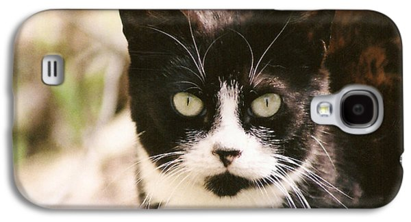 Black And White Feral Cat Galaxy S4 Case