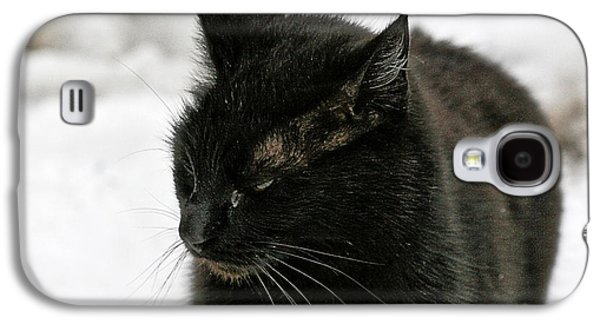 Black Cat White Snow Galaxy S4 Case