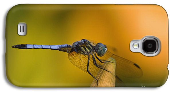 Blue Dasher - D007665 Galaxy S4 Case by Daniel Dempster