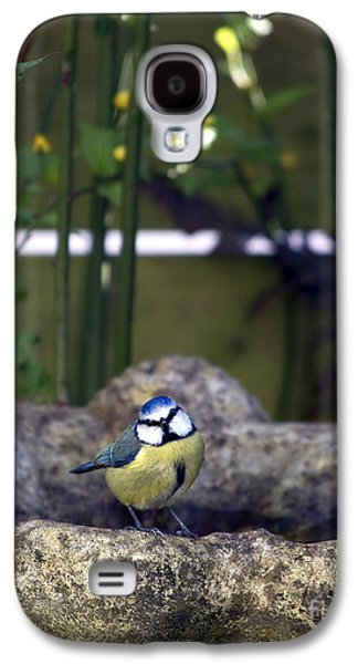 Titmouse Galaxy S4 Case - Blue Tit On Bird Bath by Jane Rix