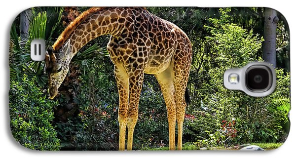 Bowing Giraffe Galaxy S4 Case by Mariola Bitner