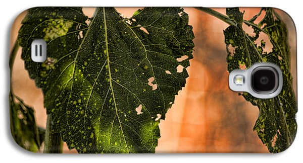 Buggilicious Galaxy S4 Case