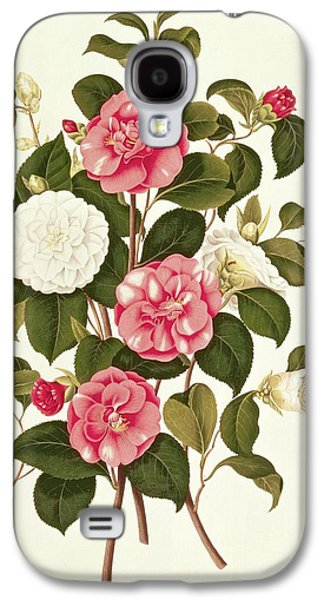 Camellia Galaxy S4 Case by English School