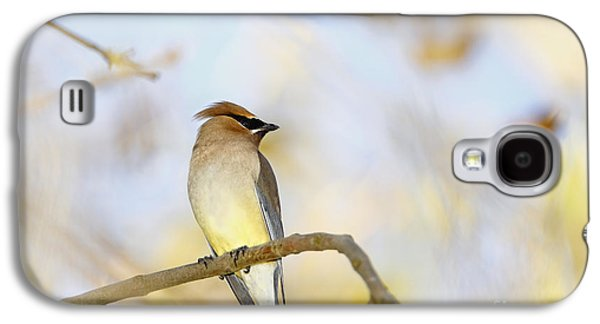 Cedar Waxwing On Yellow And Blue Galaxy S4 Case by Susan Gary