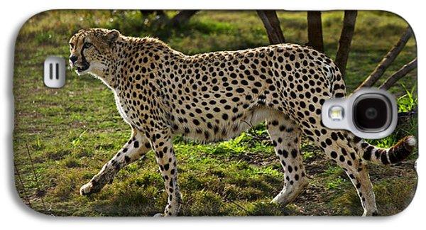 Cheetah  Galaxy S4 Case