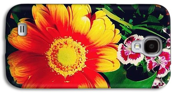 Orange Galaxy S4 Case - Colorful Flowers by Matthias Hauser