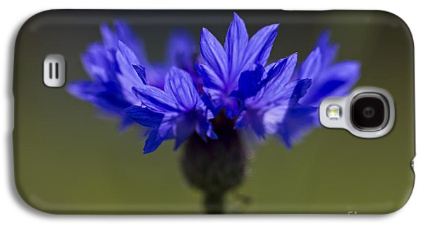 Cornflower Blue Galaxy S4 Case by Clare Bambers