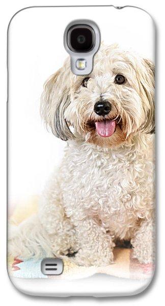 Cute Dog Portrait Galaxy S4 Case by Elena Elisseeva