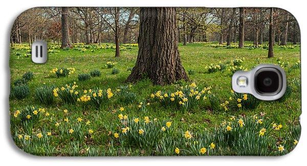 Daffodil Glade Number 2 Galaxy S4 Case by Steve Gadomski