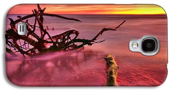 Entangled Galaxy S4 Case by Evelina Kremsdorf