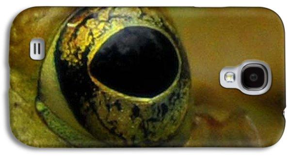 Eye Of Frog Galaxy S4 Case by Paul Ward