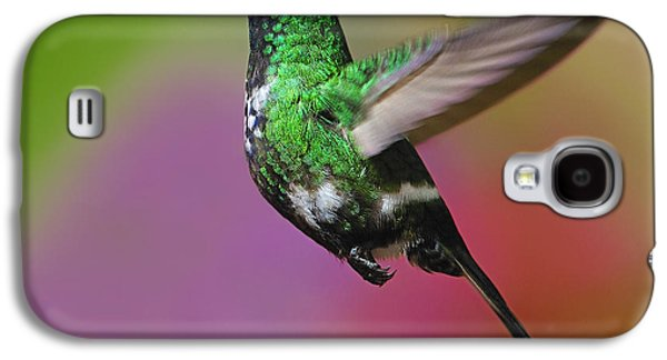 Female Green Thorntail Galaxy S4 Case by Tony Beck